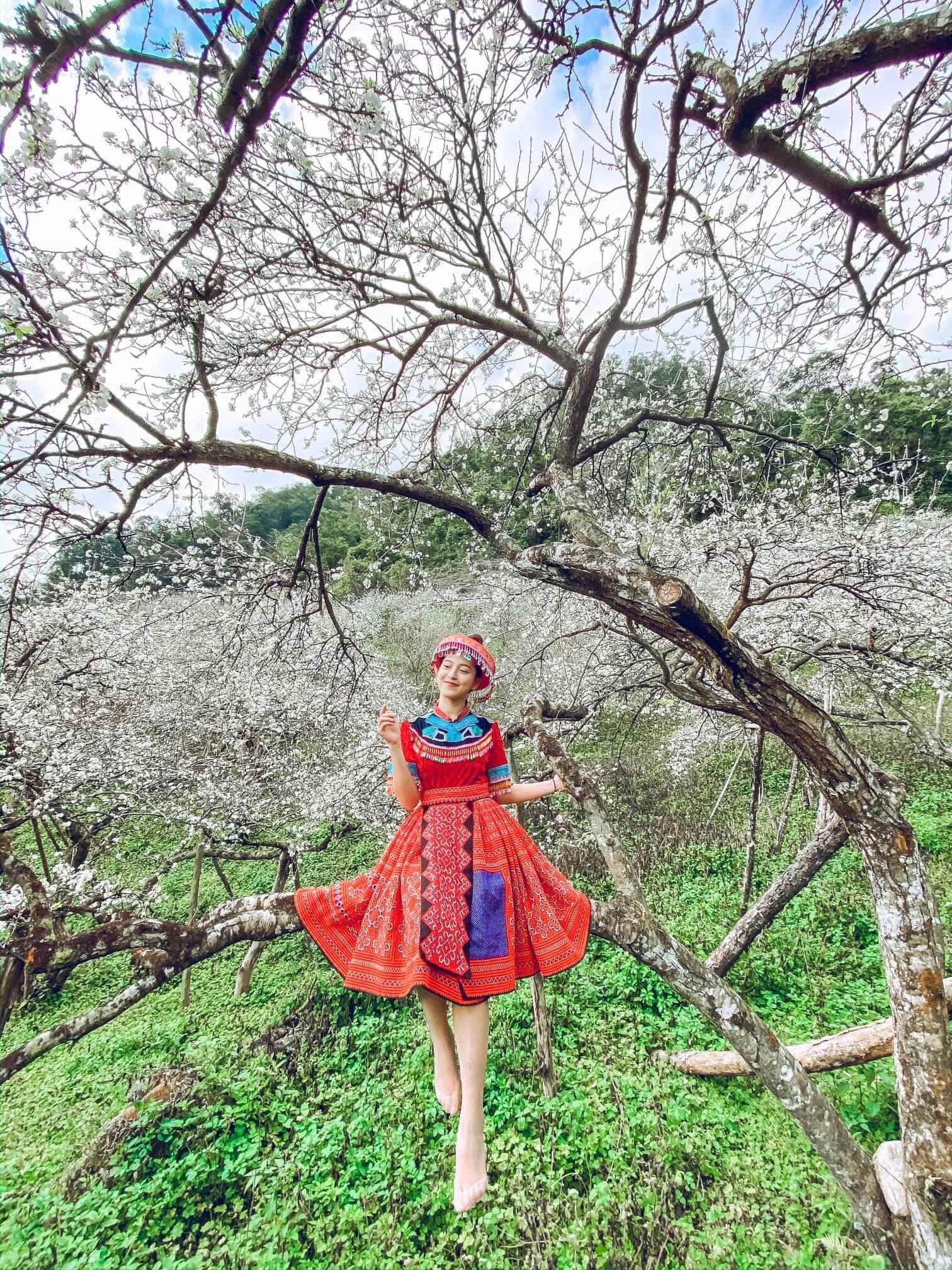 TOUR MỘC CHÂU 2N1Đ khởi hành từ Hà Nội