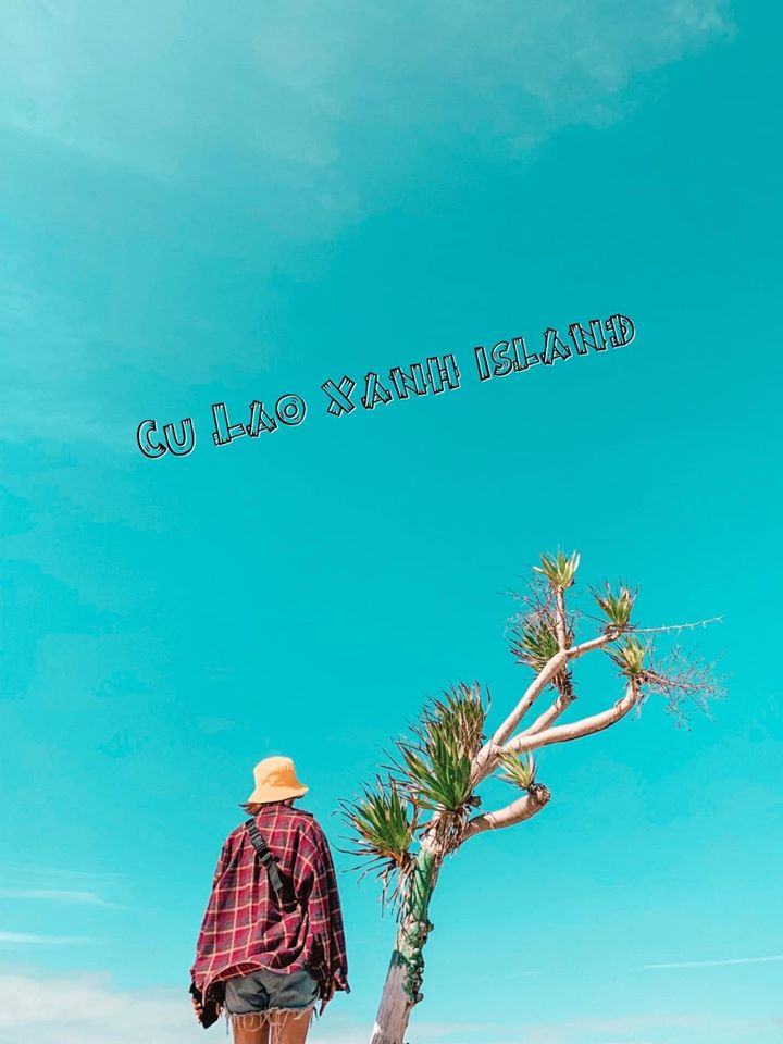 Cây cô đơn trên đảo Cù Lao Xanh